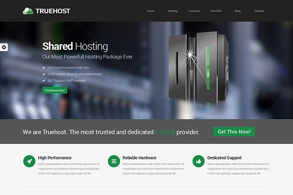 Truehost - Responsive HTML 5 Hosting Template